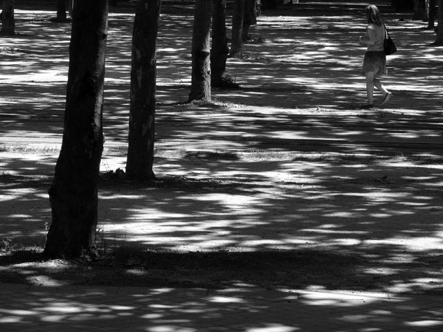 Bordeaux. Gironde. Juin 2010.