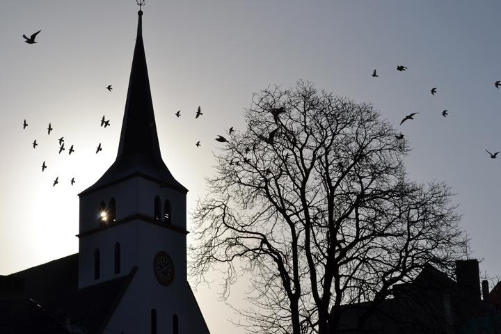 Eglise Saint-Guillaume. Strasbourg. Bas-Rhin. Janvier 2012.