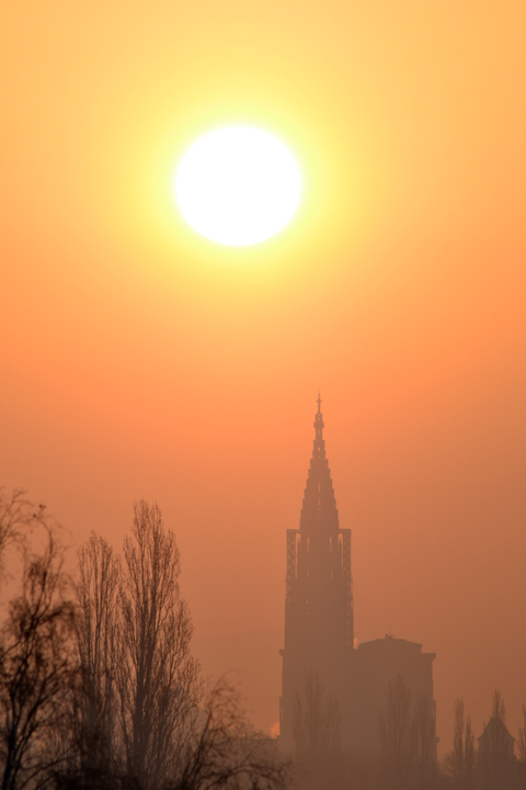 Cathédrale de Strasbourg. Bas-Rhin. Mars 2013.