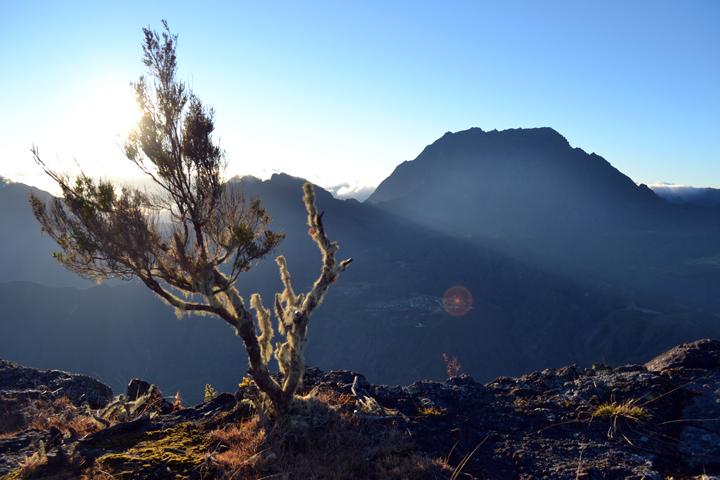 Le Piton des Neiges. La Réunion. Juillet 2013.